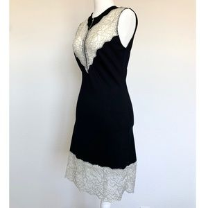 Gorgeous Sandro Dress with Lace Bodice & Zip Front